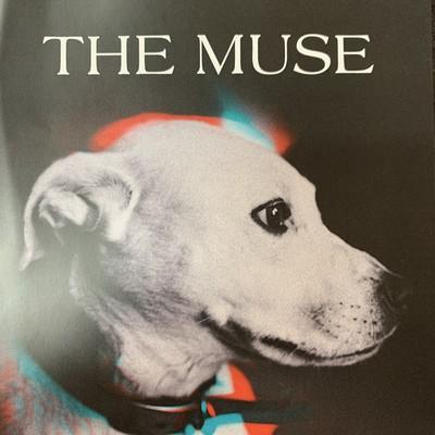 Eric Biddington | The Muse - CD