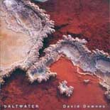 David Downes: Saltwater